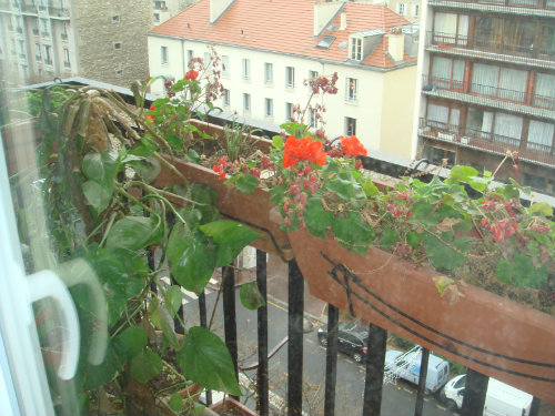 Studio in Charenton le pont - Vacation, holiday rental ad # 46279 Picture #3