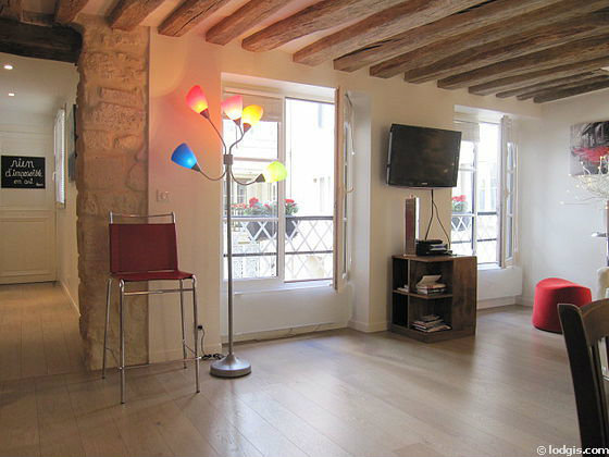 Flat in PARIS - Vacation, holiday rental ad # 46572 Picture #1