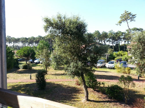 Flat in Ondres - Vacation, holiday rental ad # 46730 Picture #16