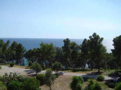 Studio in Bandol - Vacation, holiday rental ad # 46901 Picture #2