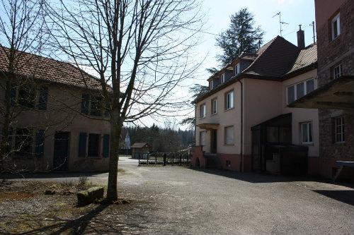 Gite Uhrwiller / Niefern - 12 personnes - location vacances  n°46939