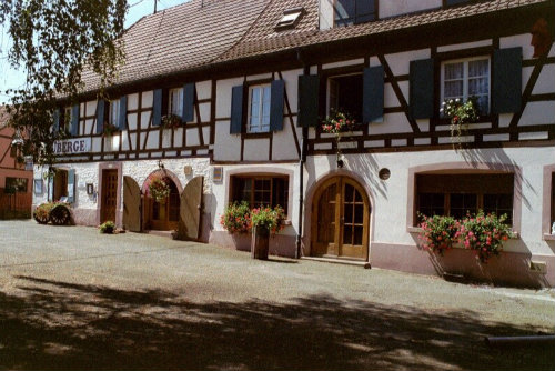 Flat Ostheim Alsace - 3 people - holiday home  #46965
