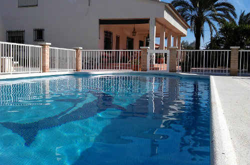 Gite in Crevillente - Vacation, holiday rental ad # 46973 Picture #0