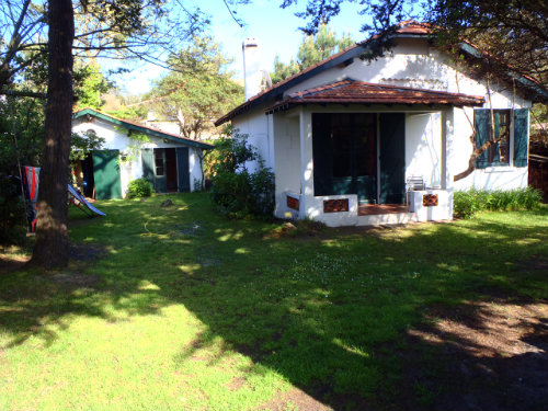 House 8 people Cap Ferret - holiday home  #47029