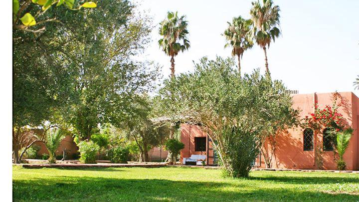 Marrakech - 12 personnes - location vacances  n°47061
