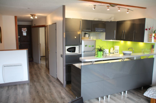 Studio in Embrun - Vacation, holiday rental ad # 47505 Picture #5