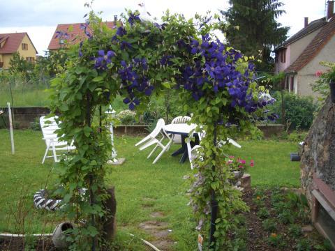 Gite à Obermorschwihr pour  3 •   3 étoiles   n°47754