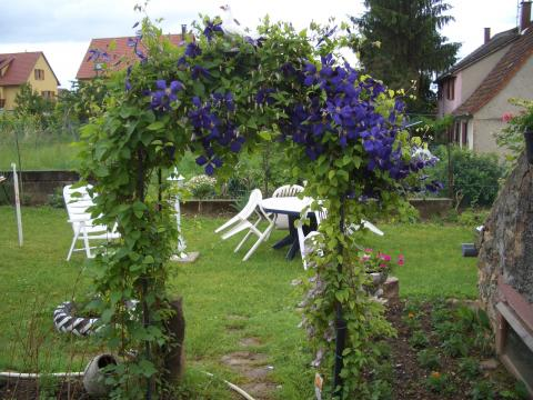 Gite 3 personen Obermorschwihr - Vakantiewoning  no 47754