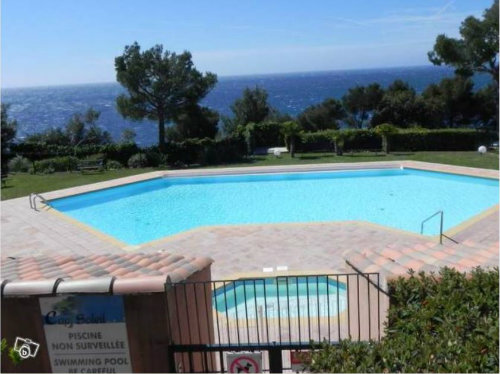 Flat in Saint Mandrier sur mer  - Vacation, holiday rental ad # 47821 Picture #0
