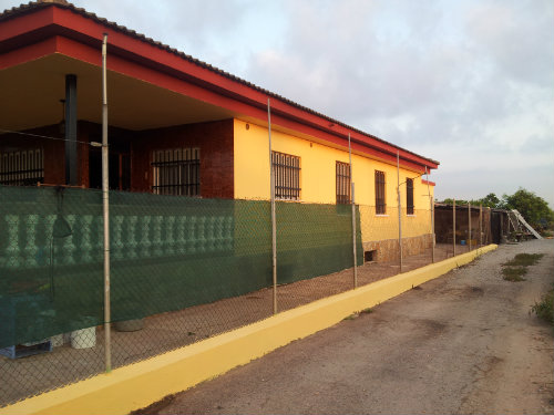 Finca Burriana - 8 personas - alquiler n°47984