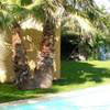 House in Mauran - Vacation, holiday rental ad # 47989 Picture #1