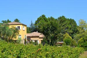 Huis Saint Julien De Peyrolas - 10 personen - Vakantiewoning  no 47050