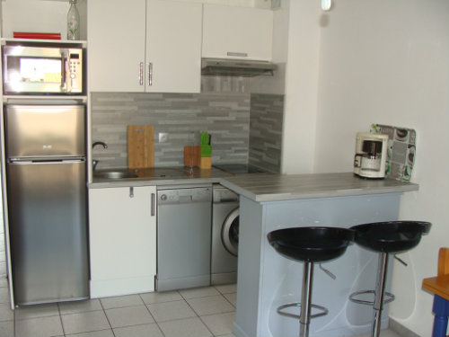 Flat in Saint-Cyprien Plage - Vacation, holiday rental ad # 48108 Picture #5