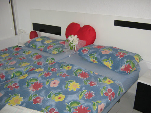 Huis Elche - 3 personen - Vakantiewoning  no 48186