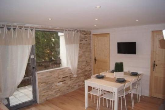 Flat 8 people Les 2 Alpes - holiday home  #48269