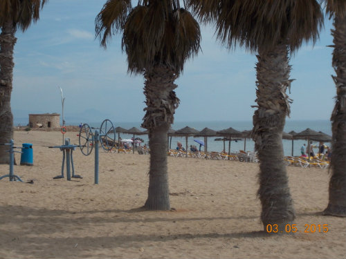Flat in Torrevieja - La Mata - Vacation, holiday rental ad # 48354 Picture #19