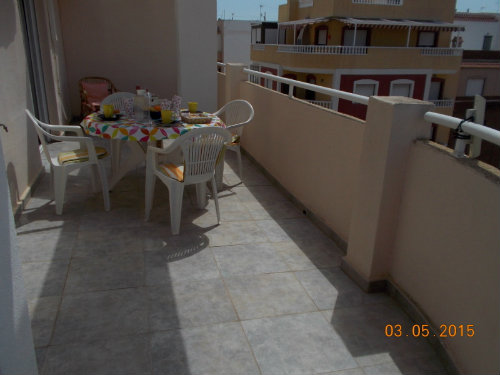 Flat in Torrevieja - La Mata - Vacation, holiday rental ad # 48354 Picture #3