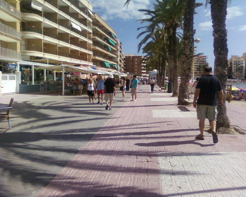 Flat in Torrevieja - Vacation, holiday rental ad # 48545 Picture #2