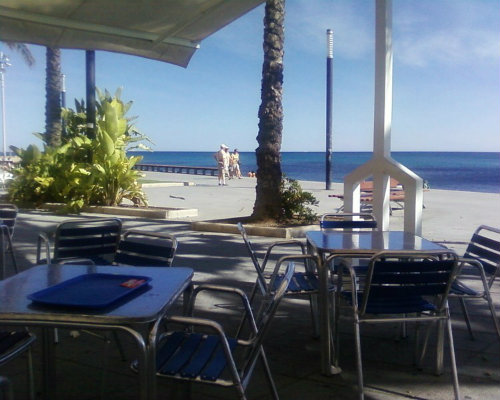 Flat in Torrevieja - Vacation, holiday rental ad # 48545 Picture #3