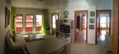Flat in Torrevieja - Vacation, holiday rental ad # 48545 Picture #7