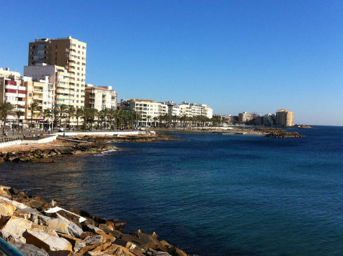 Torrevieja -    3 bedrooms