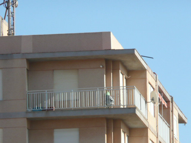Flat in Torrevieja - Vacation, holiday rental ad # 49431 Picture #1