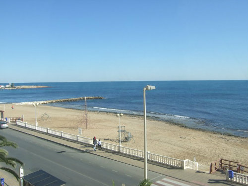 Flat in Torrevieja - Vacation, holiday rental ad # 49431 Picture #15