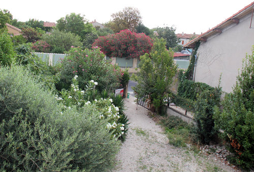 House in Avignon - Vacation, holiday rental ad # 49601 Picture #8