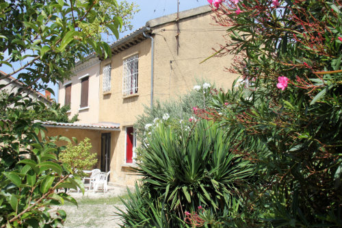 House in Avignon - Vacation, holiday rental ad # 49601 Picture #0