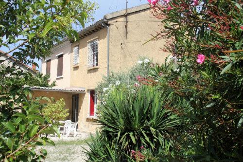 Maison Avignon - 5 personnes - location vacances  n°49601