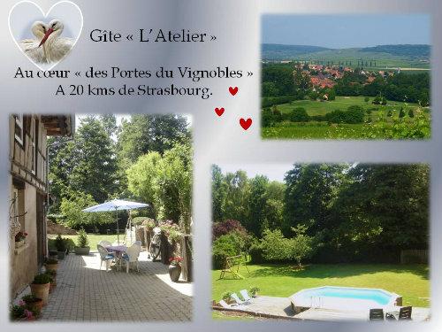 Gite Odratzheim - 4 personnes - location vacances  n°49695