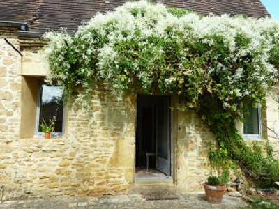 Bed and Breakfast in Sarlat - Vakantie verhuur advertentie no 49845 Foto no 6