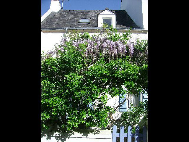 Huis Port Navalo - 6 personen - Vakantiewoning  no 49853
