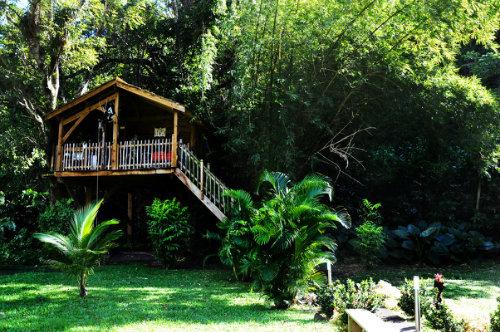 Gite Pointe-noire - 4 personnes - location vacances  n°50188