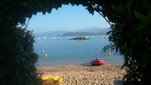 Gite in calcatoggio - Vacation, holiday rental ad # 50343 Picture #3 thumbnail