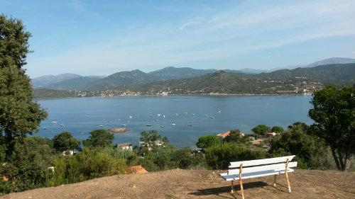 Gite Calcatoggio - 16 personnes - location vacances  n°50343