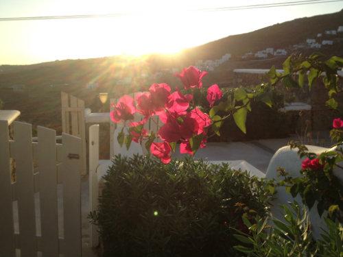 Maison Mykonos - 3 personnes - location vacances  n°50399