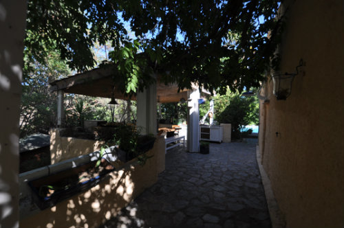 Bed and Breakfast in Oletta - Vacation, holiday rental ad # 50402 Picture #6