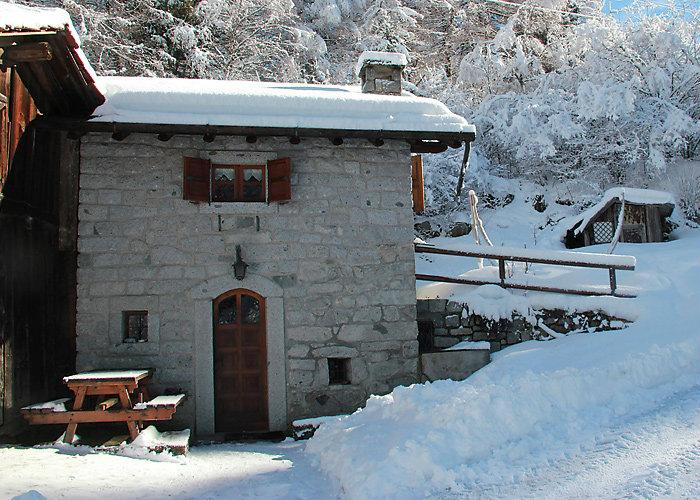Chalet Passo Tonale  - 4 personnes - location vacances  n°50419