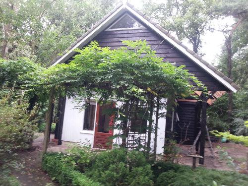 Huis Norg - 6 personen - Vakantiewoning  no 50461