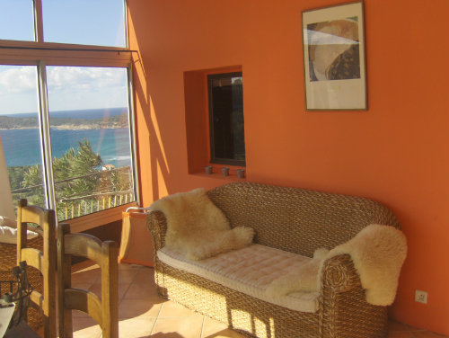 Gite in Cargèse - Vacation, holiday rental ad # 50496 Picture #10