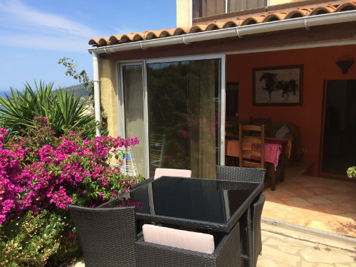 Gite in Cargèse - Vacation, holiday rental ad # 50496 Picture #13