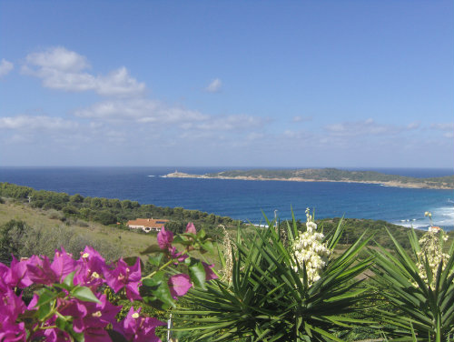 Gite in Cargèse - Vacation, holiday rental ad # 50496 Picture #17