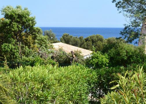 Maison Saint Aygulf - 4 personnes - location vacances  n°50575