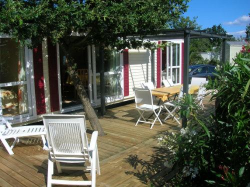 Mobil-home Argeles Sur Mer - 6 personnes - location vacances  n�50684