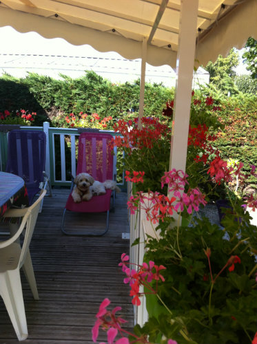 Mobile home in ST HILAIRE DE RIEZ - Vacation, holiday rental ad # 50727 Picture #10