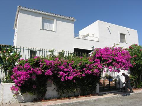 Spain rentals Vacation, Holiday Home, Gite, B&B  #50753