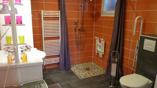 Gite in Vieux-Thann - Vacation, holiday rental ad # 50946 Picture #11