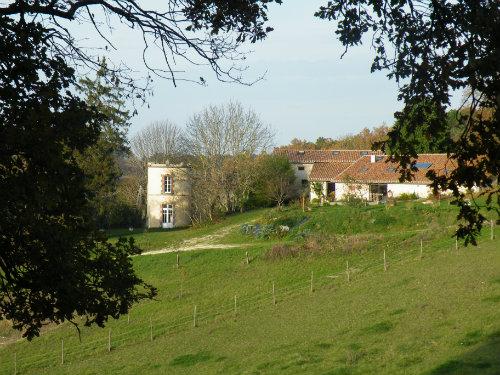 Gite Saint Amant - 5 people - holiday home  #51015