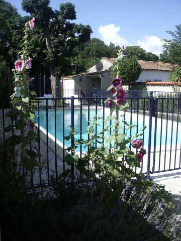 House Angoulins - 4 people - holiday home  #51220